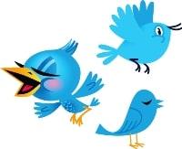twitter_birds-200