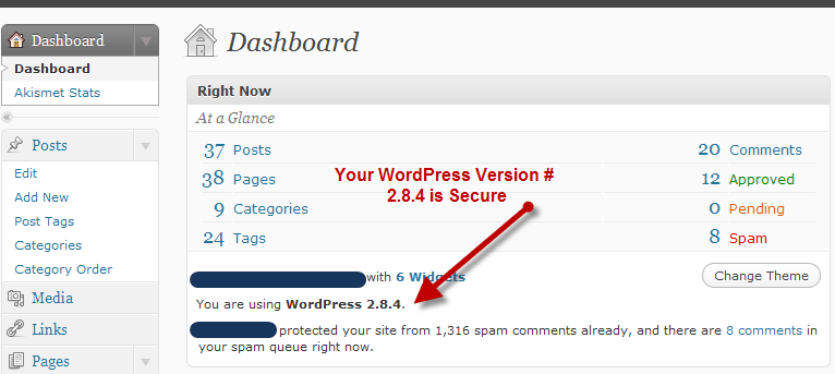 wordpress version demo