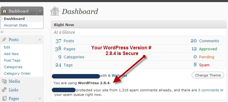 wordpress version demo